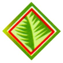 Perkebunan Sumatera Utara, PT
