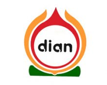 Dian Adi Furniture, CV.