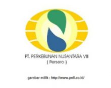 Perkebunan Nusantara VIII, PT.